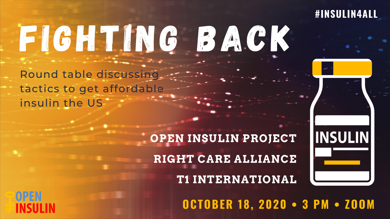 FIGHTING BACK: Round table discussing tactics to get affordable insulin in the US