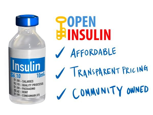 How much will it cost to install and run a small scale insulin production system?